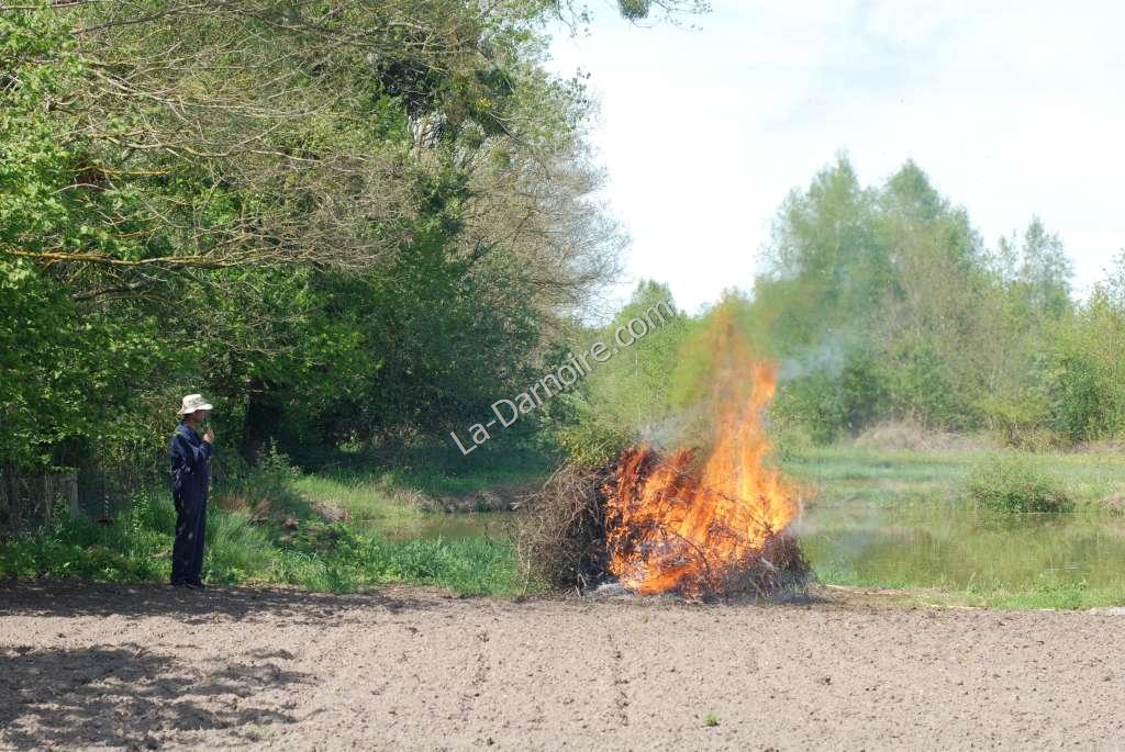 Brambles make a good bonfire