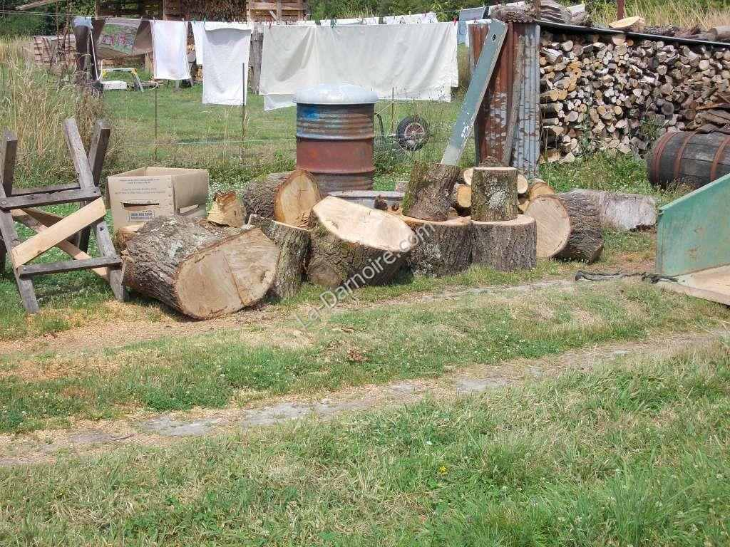 Oak logs ready for splitting