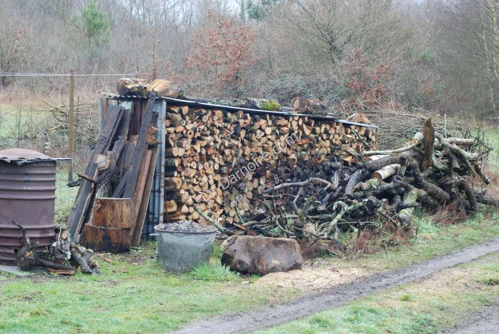 The full-to-capacity temporary wood store