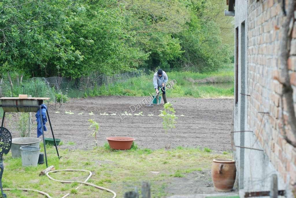 Planting has started